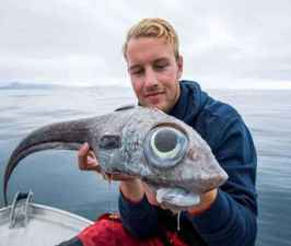 Fisherman Catches a 'Dinosaur' Fish Straight out of Steven Spielberg's Movies.jpg