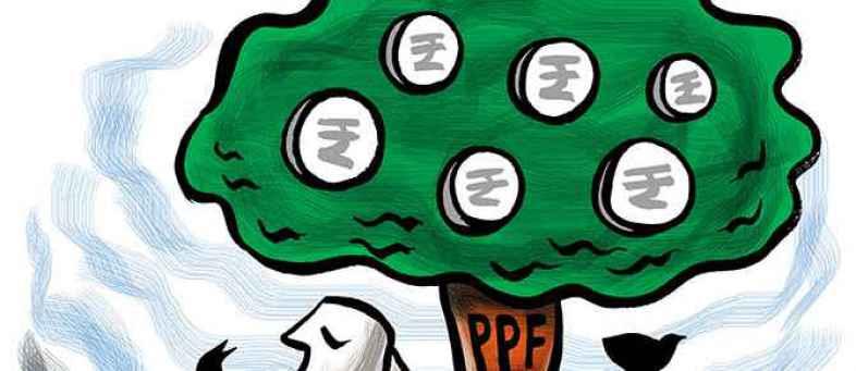 PPF, Billionaire Tricks, PPF Scheme Benefits,.jpg