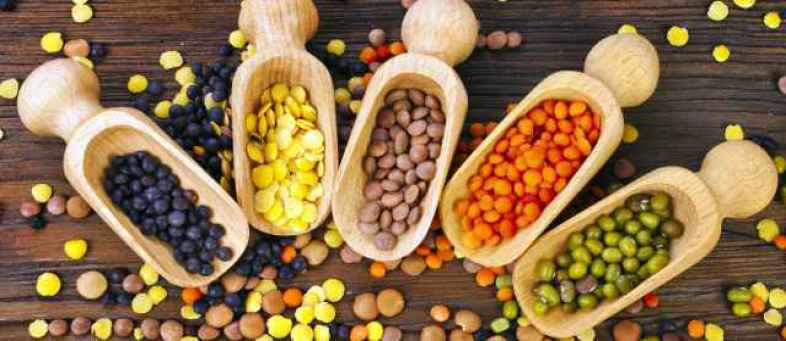 India's pulses import may down by 60% in FY21 IPGA.jpg