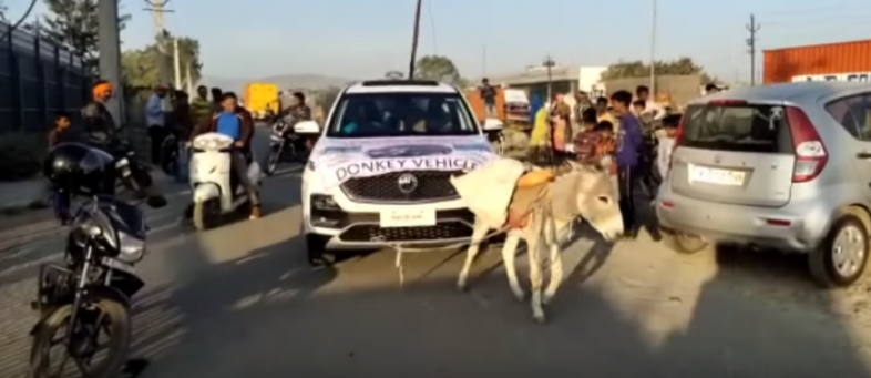 Angry customer makes donkey pull MG Hector, carmaker initiates action.jpg
