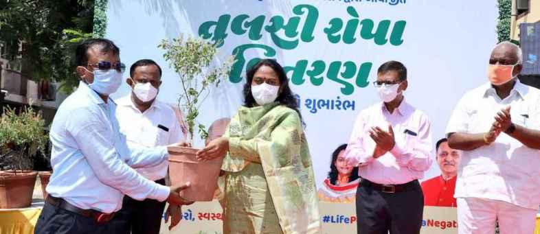 Gujarat CM Rupani's new formula – Planting Tulsi , Corona gone, best for Immunity.jpeg