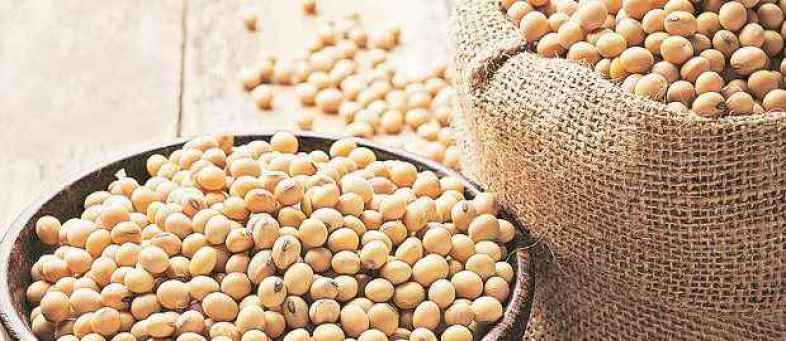 Soybean futures.jpg