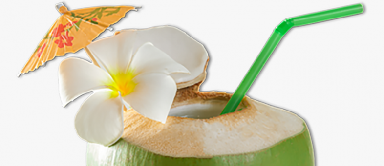 Coconut is beneficial in period of corona, will boost immune system.png