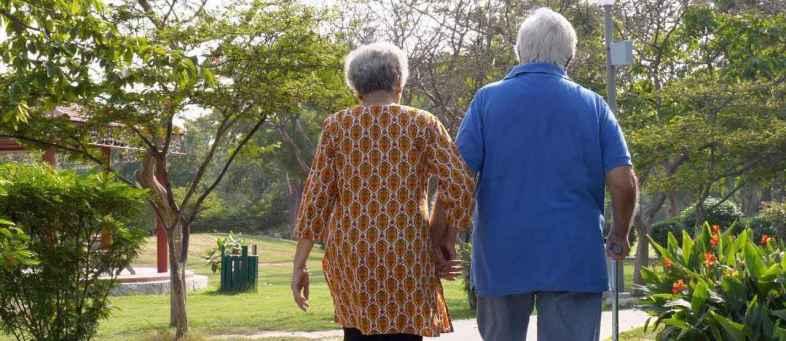 Senior Citizen Interest Income.jpg