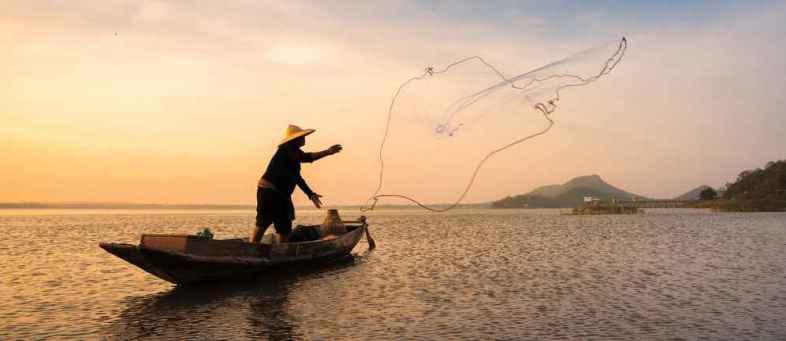 New-app-helps-fisherman-seek-and-sell-their-catch-.jpg