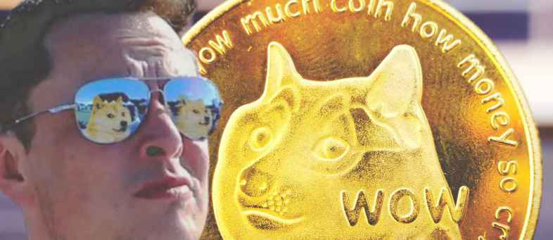 Dogecoin jumps 10% after Elon Musk's Twitter profile picture change 1.jpg