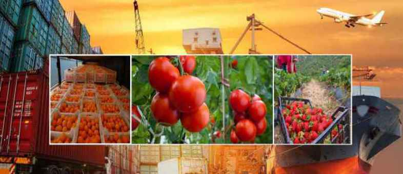 India's Agriculture Exports increase 17.34% to 41.25 billion dollar in year 2020-21.jpg