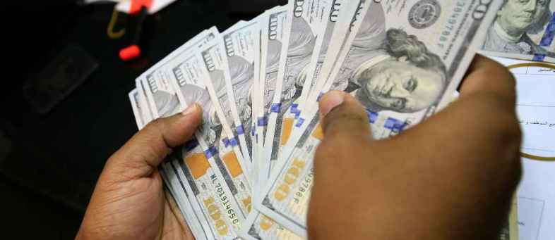 India's Forex Reserves Surge to All-time High of USD 493.48 Billion.jpg