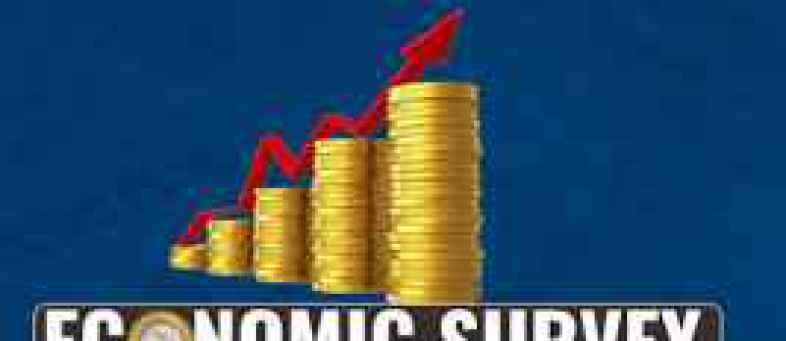 Economic Survery.jpg