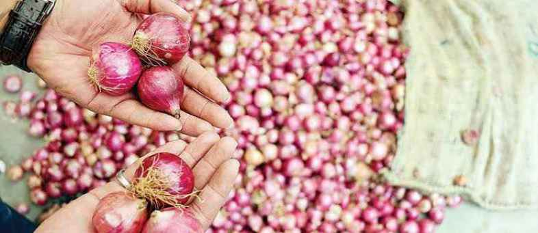 Onion prices will come down sharply in 15 days.jpg