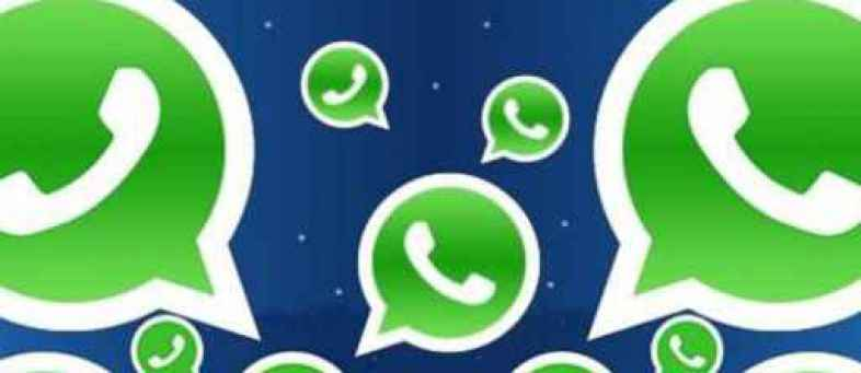 Two whatsapp groups in Vadodara permanently banned, find out why.jpg