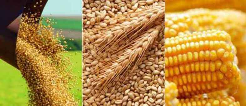 Farmers are still deprived of getting high prices for agricultural products.jpg