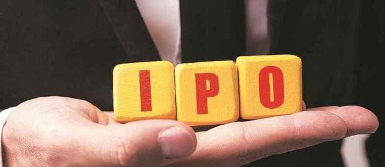 Neogen chemicals' IPO gets 41.14 times subscription.jpg