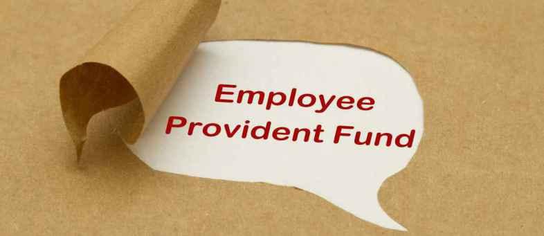 Provident Fund, Transfer, Process, EPFO, Portal, EPF Account, Subscriber, UAN.jpg