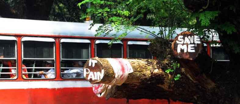 Maharashtra govt to review bullet train project CM Thackeray.jpg
