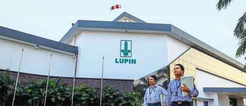 Lupin.jpg