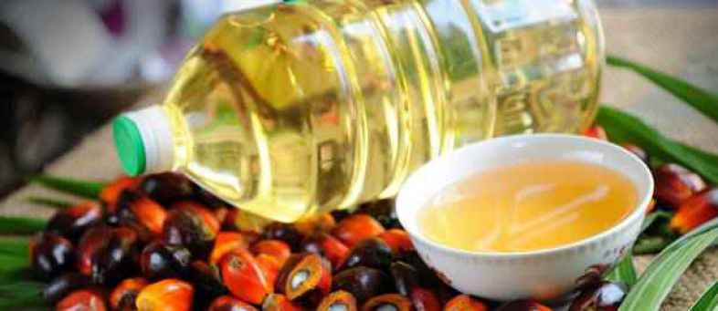 India's Palm oil import to record 12.62 lakh tonnes in September 2021.jpg