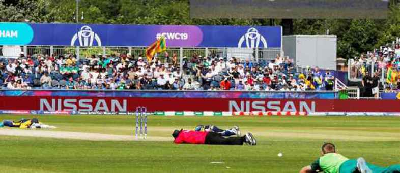 Sri Lanka vs South Africa  Bee attack halts play as players, umpires hit the deck.jpg
