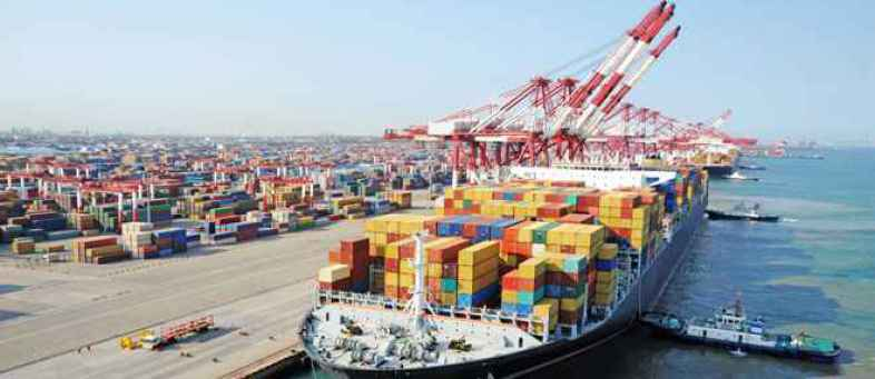 DOC exports drop 78%, Low price in world market.jpg